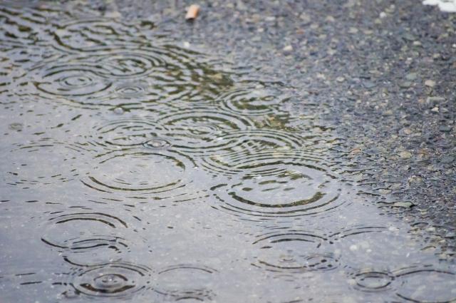 突然の雨!小雨決行時や万一の大雨に備えておくこと