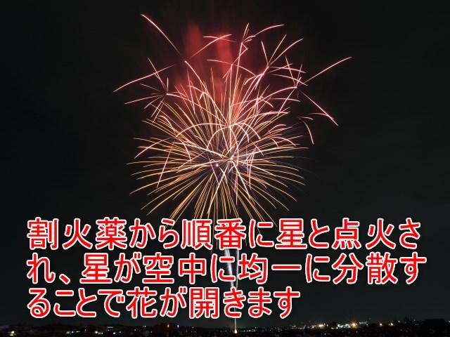 01-05_割火薬から順番に星と点火され、星が空中に均一に分散することで花が開きます