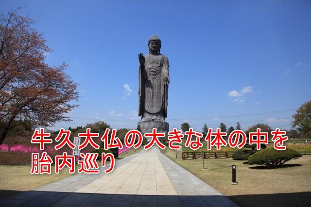 03-03-01_牛久大仏の3つの魅力