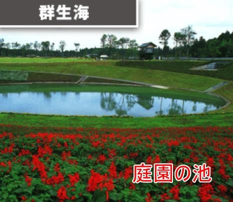 03-06_群生海
