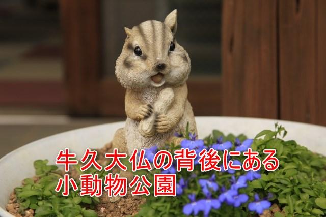 03-03-02_庭園と小動物公園