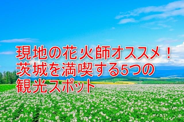 06-01_現地の花火師オススメ!茨城を満喫する5つの観光スポット