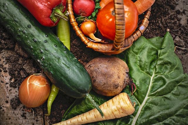 08-02_野菜&果物